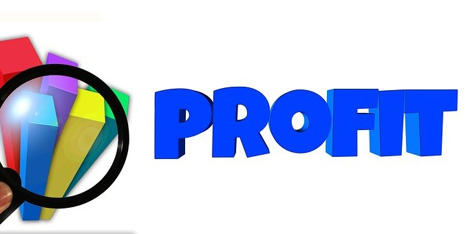 Petronelsystems Profit