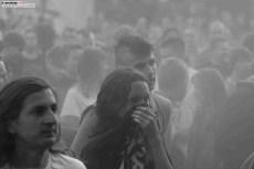 Lemon Festival 2 (20)