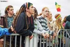 Reggaeland 2013 (17)