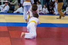 Judo (15)