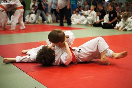Judo SDK (20)