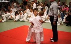 Judo SDK (3)