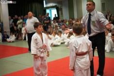 Judo SDK (9)