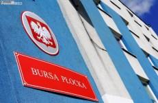 Bursa (1)