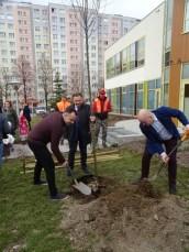 sadzenie drzew (2)