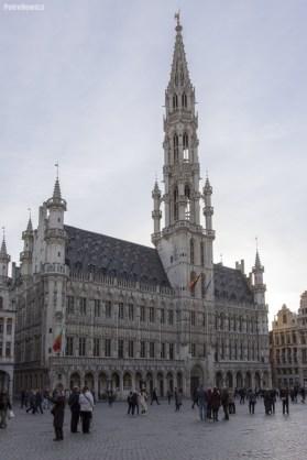 Bruksela (42)