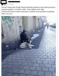 Poznań - Głogowska- zrzut z facebooka