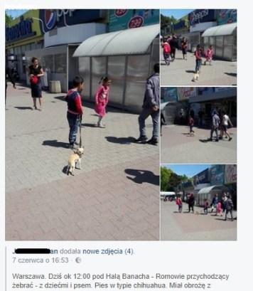 Warszawa - Hala Banacha, zrzut z facebooka