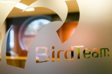 BirdTeam (15)