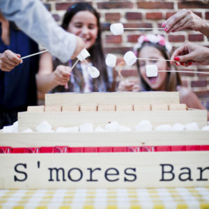S'mores bar rires - petronillelampion
