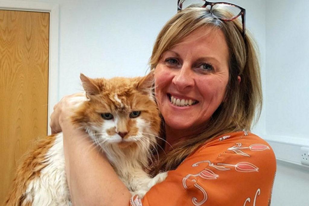 Kucing puing yang menandai ulang tahun ketiga puluh, terus menjalani kehidupan kucing penuh