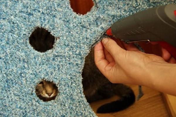 Vi lim ved hjælp af stoffet til hver side af det fremtidige Feline House