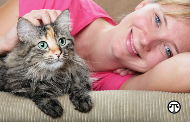You can now give your cat treats that are good for her fur, skin and digestion.