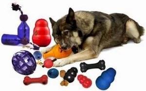 cachorro-com-brinquedo-interativo