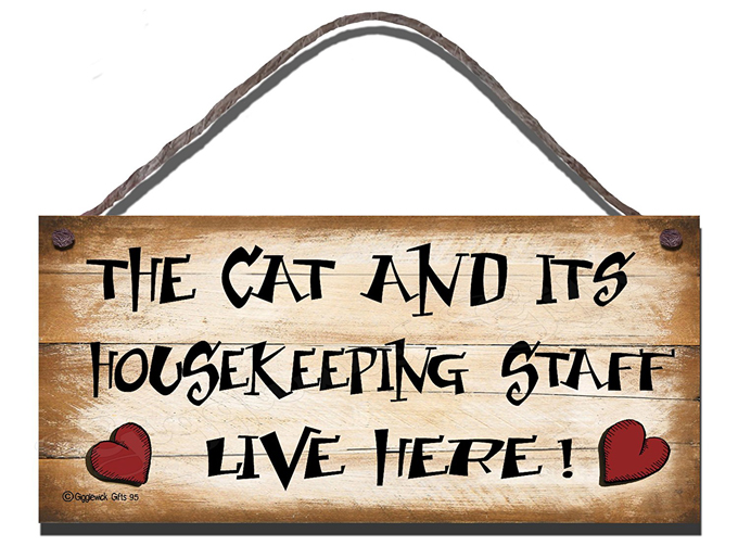 Image result for cat with sign