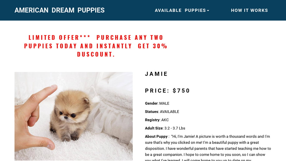 Pet Scam Website Americandreampuppiescom - What is invoice number on receipt online pet store