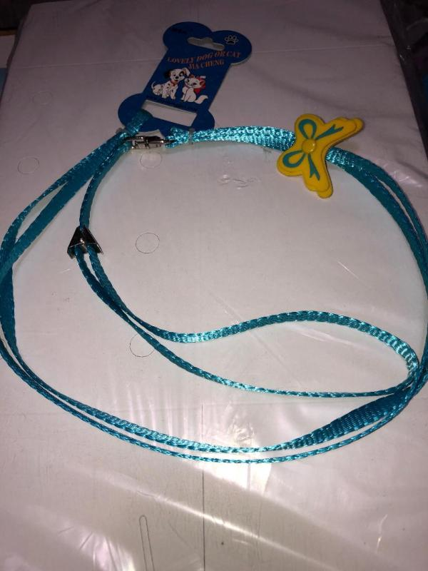 Blue collar leash set cats, small dogs ,pets