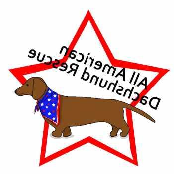 All American Dachshund Rescue