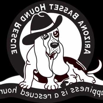 Basset Hound Rescue Arizona