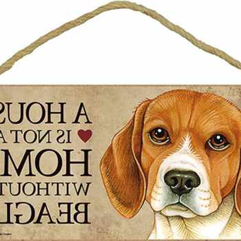 Beagle Signs