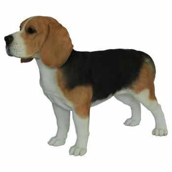 Beagle Statue
