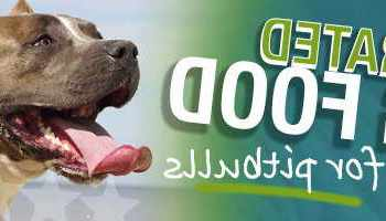 Best Dog Food For American Pitbull Terrier