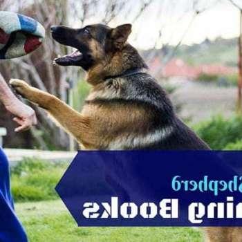 Best German Shepherd Training Books