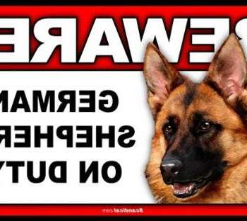 Beware Of Dog Sign German Shepherd