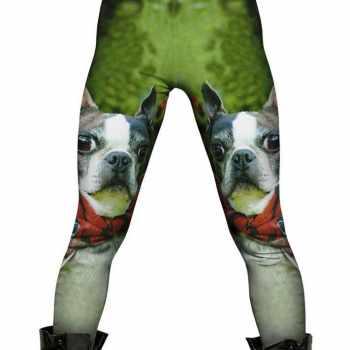 Boston Terrier Pants