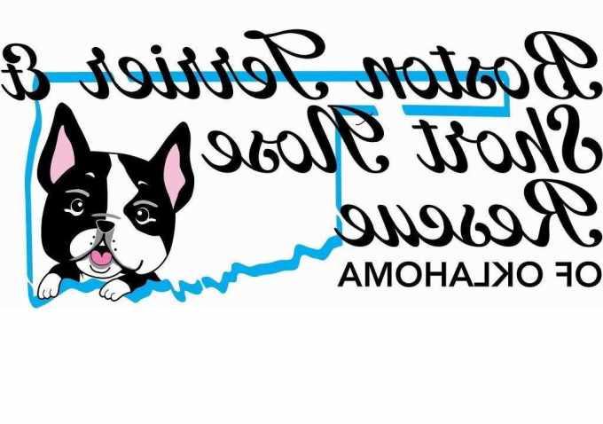 Boston Terrier Rescue Oklahoma