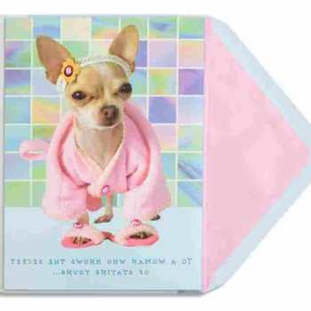 Chihuahua Birthday Cards