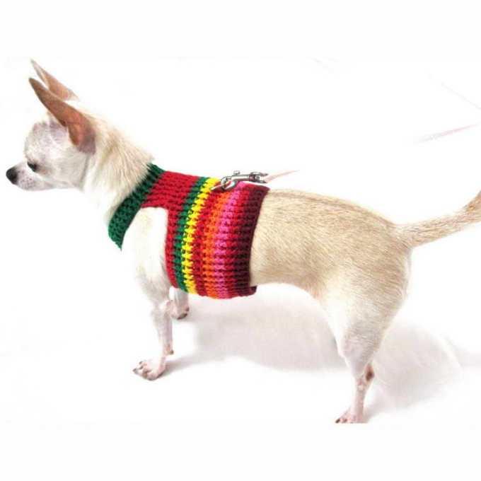 Chihuahua Harness Xxs