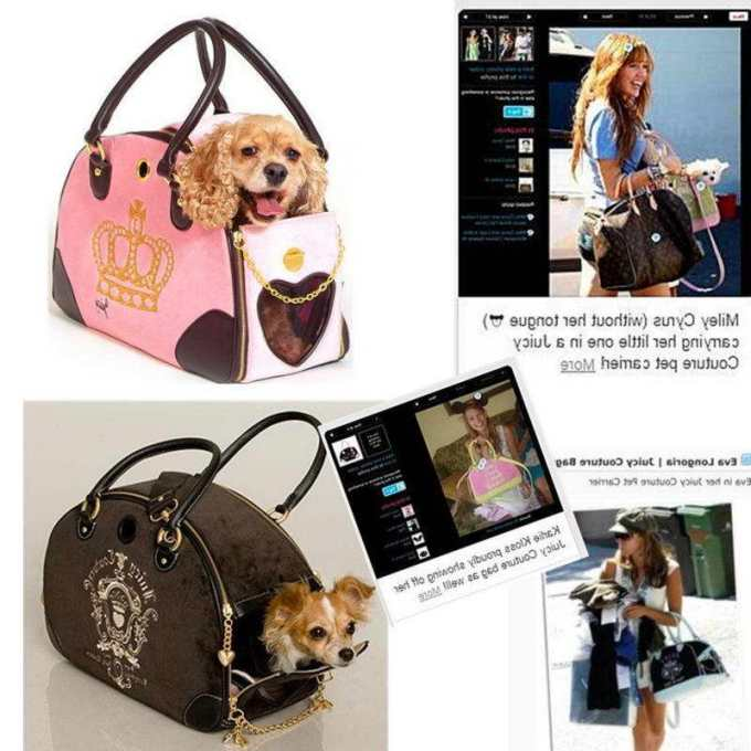 Chihuahua Pet Carriers