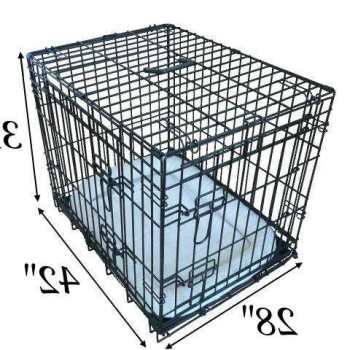 Crate Size For Labrador