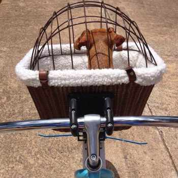 Dachshund Bike Basket