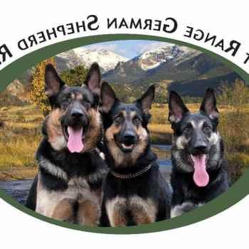 Denver German Shepherd Rescue