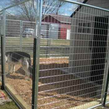 Dog Kennels For German Shepherd