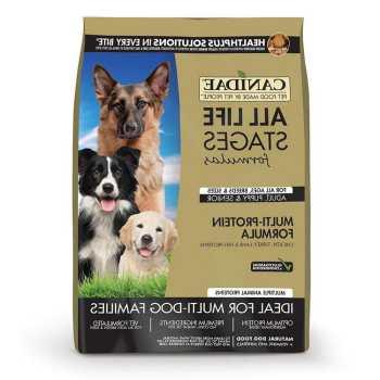English Mastiff Dog Food