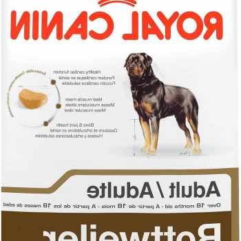 Food For Rottweiler