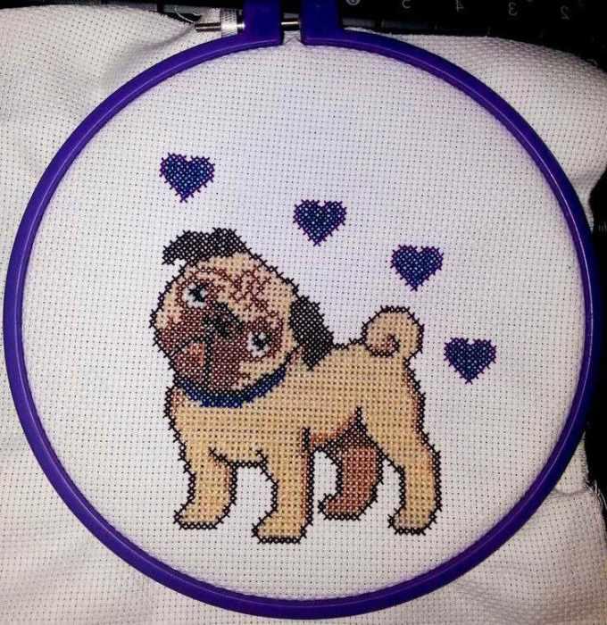 Free Pug Cross Stitch Pattern