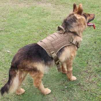 German Shepherd Harness Vest