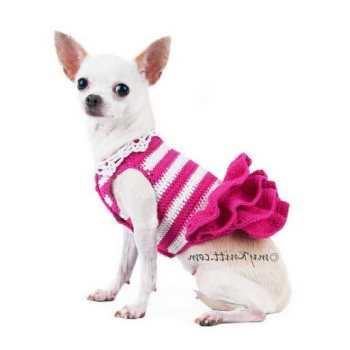 Cute Chihuahua Clothes