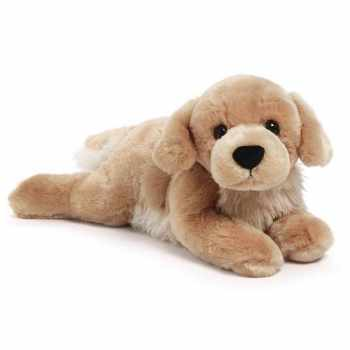 Golden Retriever Dog Toy