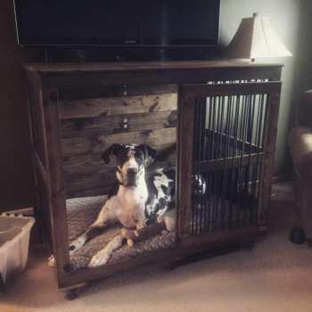 Great Dane Crate