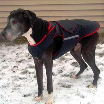 Great Dane Dog Jackets