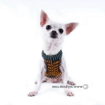 Harness For Teacup Chihuahua