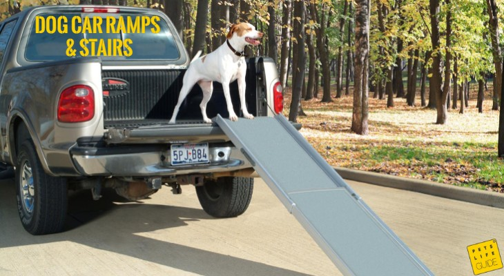 Dog Car Ramps and Stairs
