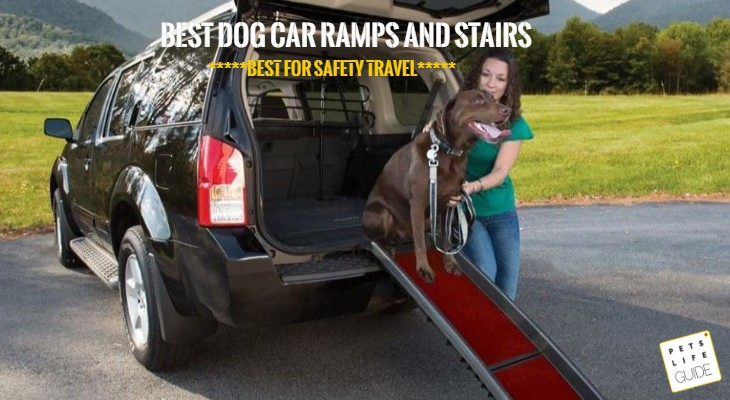 Dog ramps for gsp