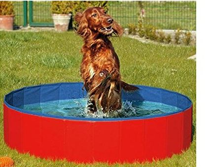 N&M Products Foldable Dog Pool