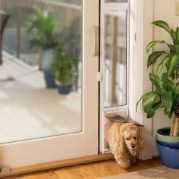 PetSafe Freedom Aluminum Patio Pane Sliding Glass Pet Door
